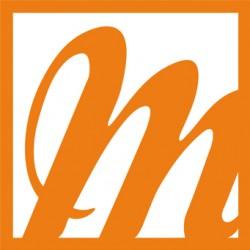 logoprintblanc_seul